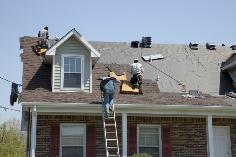 3 Signs That You Should Call a Roofing Professional Now