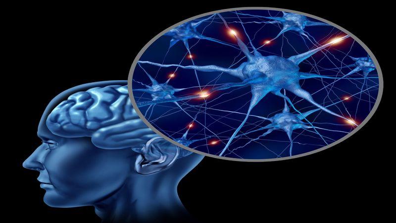 Benefits of Hiring Brain Injury Lawyers in Minnesota