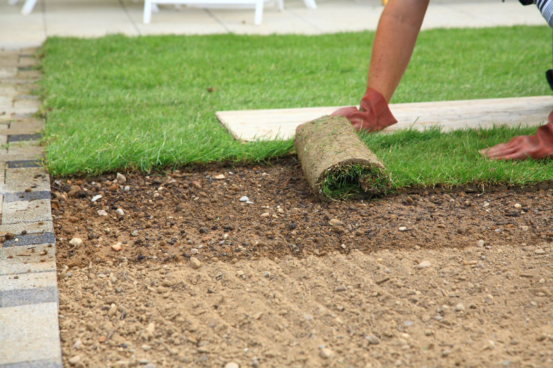 Professional Landscaping Services in Appleton WI Will Transform Your Yard