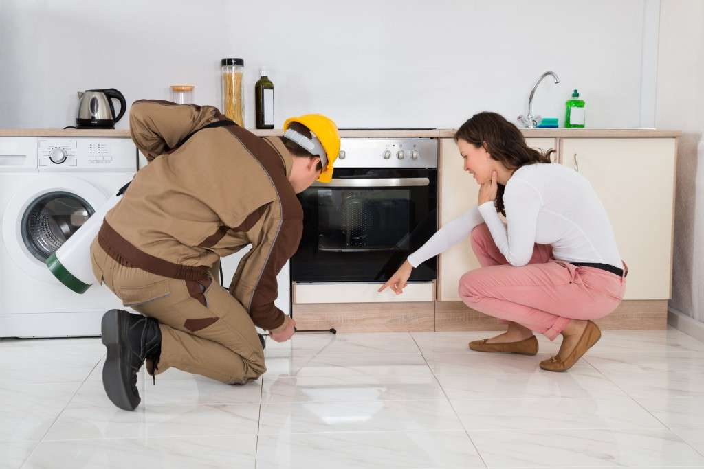 Pest Control in Perth: Know the Differences Between Indoor and Outdoor Pest Control Methods