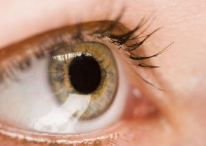 Live in Palm Beach Gardens? Your Eyes May Be at Risk For Macular Issues